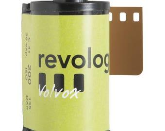 Revolog - Volvox 35mm 36 Exp