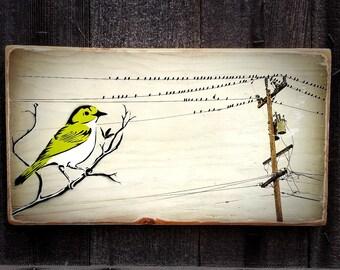 Little Green Bird Mixed Media Graffiti Art Painting on Photo Transfer Original Art on Handmade Canvas Home Decor Pop Art Birds on a Wire