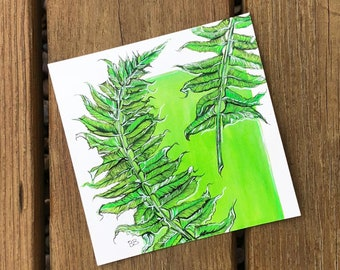 Ferns - Original Ink Creation