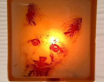 Fox Baby Night Light Fused Glass