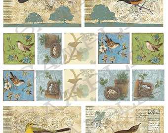 Vintage birds Collage Sheet 99b Instant Download