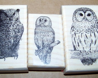 Lot of 3 Brand New Mounted Rubber Stamps - OWL OWLS