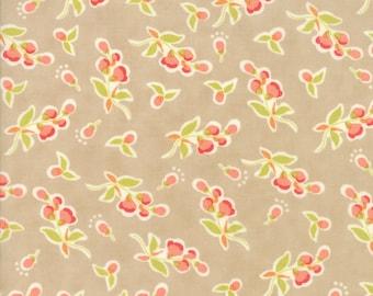 Tan Coney Island Fabric Fig Tree Fabric Medium Tan Floral Quilting Fabric By The 1/2 Yard