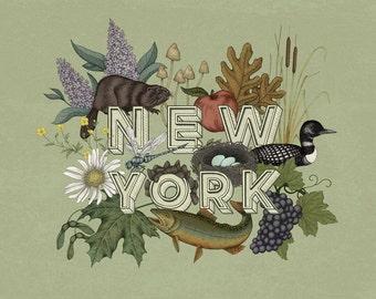 New York State Print