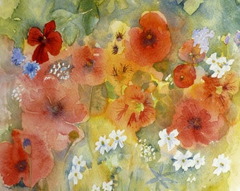 Poppies and Nasturtiums Watercolour Print