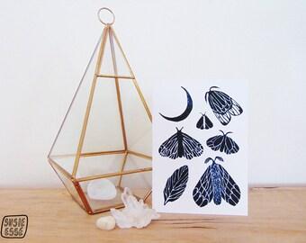A6 Moon Moths Greeting Card
