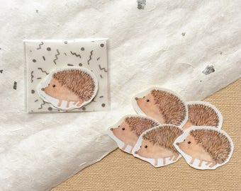 Watercolor Hedgehog Sticker Pack (5 in one pack)