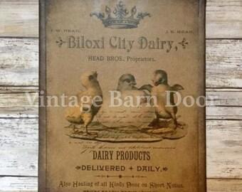 Baby Chicks - Biloxi City Dairy 8x10 Canvas