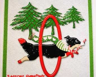 Christmas Agility Collie