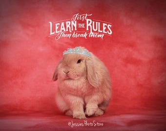 Learn The Rules Canvas Photograph Size - A2, A3 + A4.