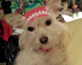 Pom Pom dog or cat pet Hat - Choose colors - 2 to 20 lb dog or cat - made to order - Need measurements