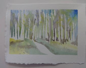 a fresh watercolor of a trail though birch trees