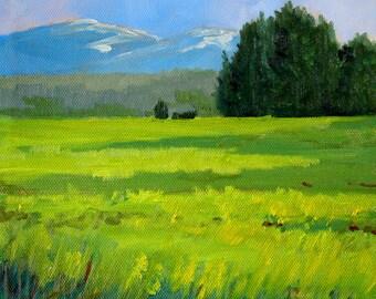 Oregon, Meadow Landscape, Oil Painting, Original, 8x8 Canvas, Rural, Mountain Scene, Spring, Green, Trees, Fields, Northwest, Central Oregon