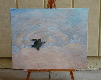 Baby Sea Turtle Trek