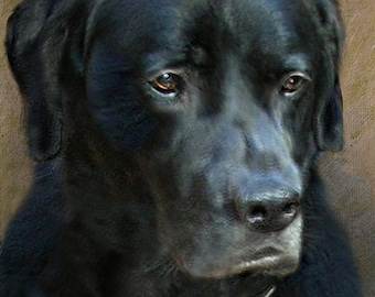 Custom Pet Portrait / Custom Dog Portrait / Portrait Painting / Pet Memorial /16 x 20 Inch Canvas / Hand Painted