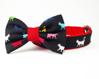 Colorful walking cat, dog collar and bow, dog collars for girls, dog collars for boys, dog collar bows, dog collar, fancy dog collar