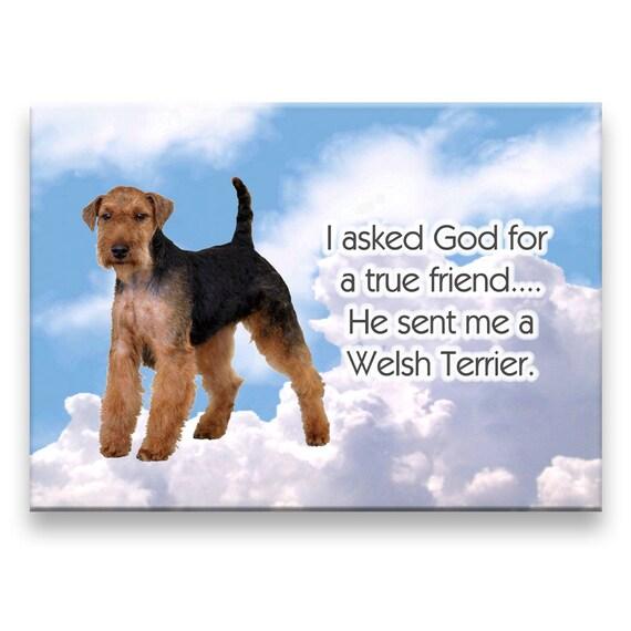 Welsh Terrier True Friend Fridge Magnet