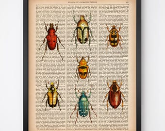 Vintage beetle print, Digital print, Instant download, Insect art print, Beetle wall art, Dictionary art, Entomology art, 8x10, 11x14 print