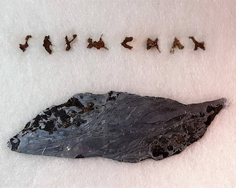 Sale SEYMCHAN Pallasite Meteorite Rare Fragment Writing COLLECTOR Display And 77.2 Gram Slice With Olivine Crystals From Russia