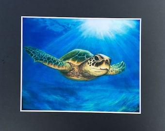 See Turtle print 8x10