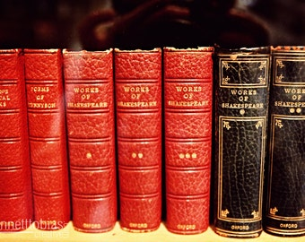 Shakespeare Book Volumes Photography, Large Wall Fine Art Print, Study and Home Photography