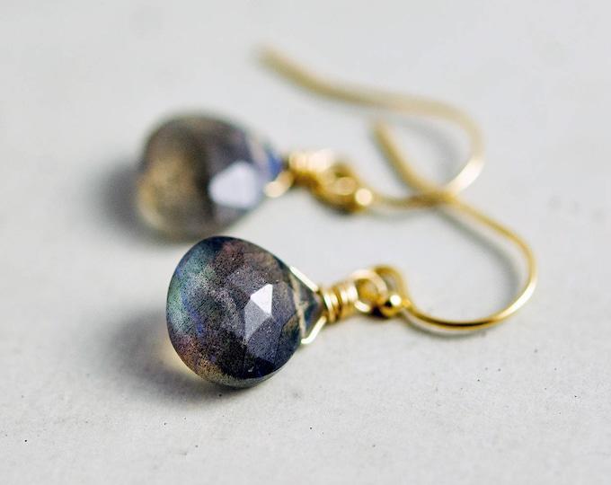 Labradorite Earrings Rose Gold Fill Dangle Blue Green Gemstone PoleStar
