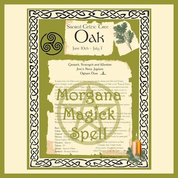 Oak Sacred Celtic Tree