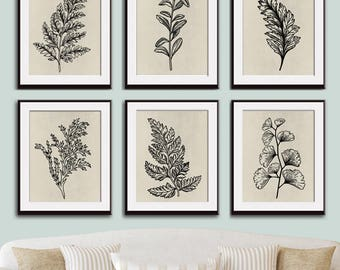 Fields of Forest (Series 6A) Set of 6- Art Prints (Featured in Black on Stone Wash) Botanical Plant Sketch Art Print