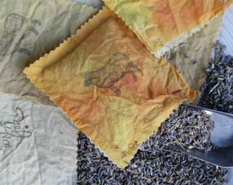Organic Lavender Sachet/Organic Cotton/Plant Dyed/Fabric/Natural Dye/Moth Repellent/Air Freshener/Mini Pillow Sachet/French Lavender