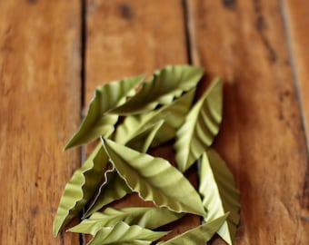 Paper Leaves - Moss Green - Paper Leaf Supplies for Bouquets, Boutonnieres, Corsages, Scrapbooking