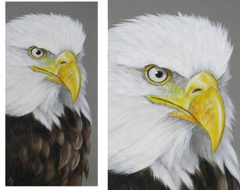 Bald Eagle painting - american national symbol bird art - realistic wildlife painting - original eagle art - raptor painting