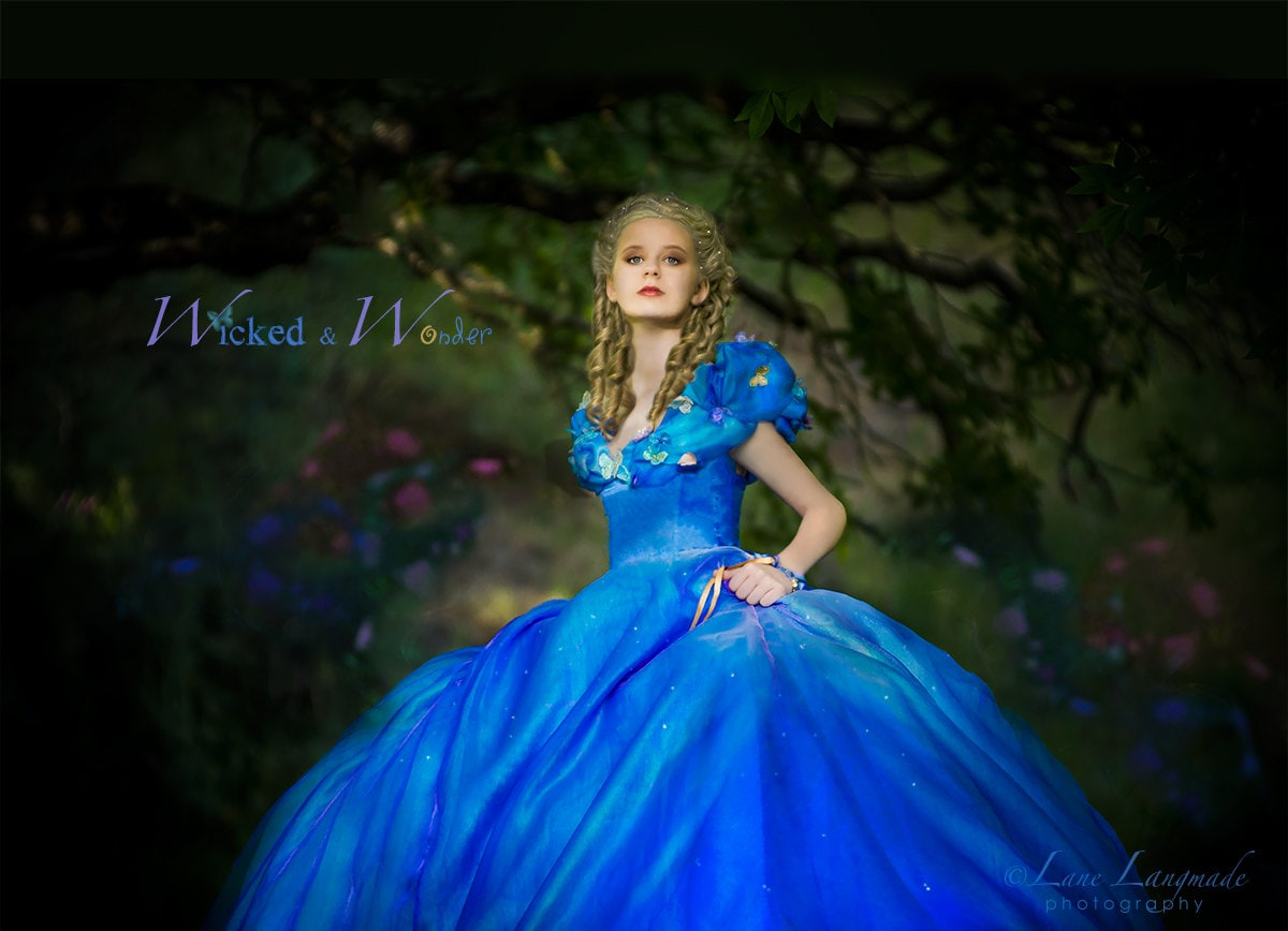 Cinderella Costume 2015 Cinderella Dress Tween Teen Adult