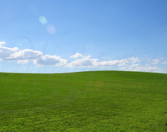 Green grass hill photography, Grassy hill blue sky photo, Green grass hill picture