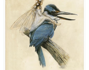 Fine Art Print - The Fairy on the KINGFISHER