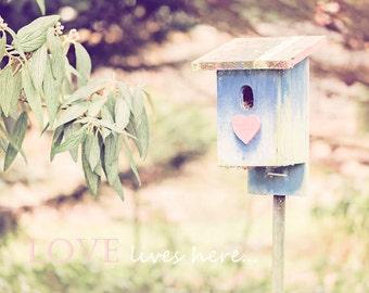 Anniversary Gift - Birds - Typography- LOVE - Birdhouse Photograph - Heart - Romantic - Fine Art Photography Print - Pastel Home Decor