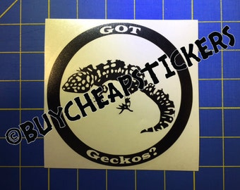 Leopard Gecko Decal/Sticker - Got Geckos? 5X5