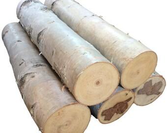 """Six 24"""" White Birch Logs"""