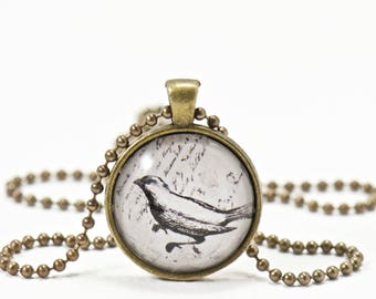 Raven Pendant Necklace, Gifts for Her, Jewelry Gifts Under 10, Pendant Necklace, Girlfriend Gifts, Bezel Pendant Vintage Inspired Bird Lover