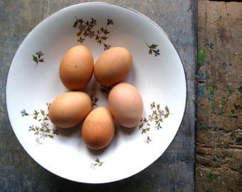 a vintage French porcelain compotier, pedestal plate, fruit stand,fruit dish, floral, white