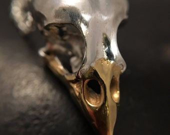 Finch silver bird skull pendant, 24ct yellow gold beak