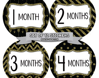 Baby Girl Monthly Baby Stickers Baby Month Stickers Baby Girl Month Stickers Monthly Photo Stickers Monthly Milestone Stickers 801