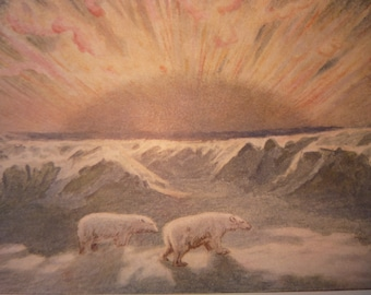 Aurora Borealist Polar Nights Polar Bears 1904 - vibrant color print -  Science Illustration - Print only or with Mat - Ships Fast