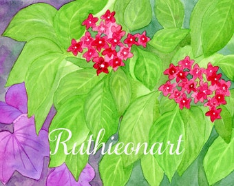 In the Garden Leaves with Red Flower - Original Watercolor
