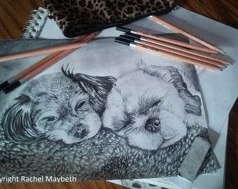 Request A Custom Sketch Of Your Pet!