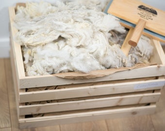 Raw Fleece Corriedale, Raw Fiber, Eco Natural Wool, WholeSale 2 lbs 7 oz, Felting