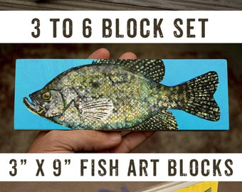 "Fish Gifts, Medium Freshwater Fish Art Block Set of 3, 4, 5 or 6, 9""x3"" Fish Wall Decor Fisherman Gift for Dad, Lake House Decor, Home Gifts"