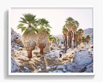 Desert Print,  Palm Trees, South Western Decor, Digital Print, Desert Photography, Desert Wall Art, Large Printable Poster, #479