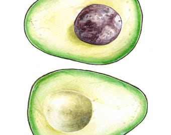 Avocado Art Print - FREE SHIPPING