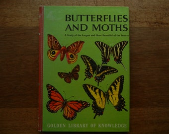 Butterflies and Moths ~ Golden Library of Knowledge 1958