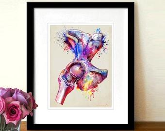 "Fine Art Print, ""Watercolor Hip Joint"",  8.5"" x 11"", Osteopathic Nurse Practitioner gift, Chiropractor art, Orthopedic Surgeon, Hip anatomy"